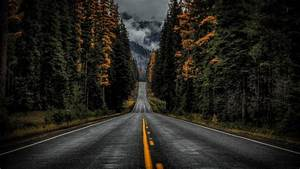 Road, Between, Trees, With, Long, View, Of, Fog, Covered, Moutain, 4k, Hd, Nature, Wallpapers