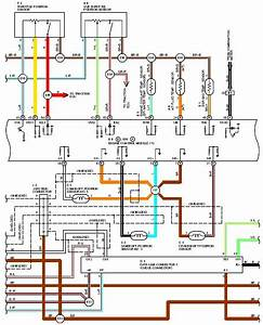 Accord 1995 Wiring Diagram