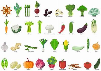 Vegetables Vegetable Fruit Clip Clipart Example Drawing