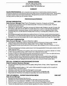 Resume Example 74 Account Executive Resume Sample Top