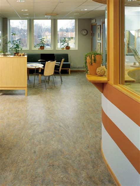 price to finish a basement forbo marmoleum vivace linoleum non toxic
