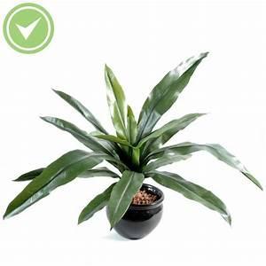 Fausse Plante Verte : fausse plante verte interieur maison et fleurs ~ Teatrodelosmanantiales.com Idées de Décoration