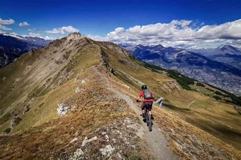 What to know about may day tours. If You Bought A Mountain Bike On Animal Crossing New Horizons How Could You Ride It? / Animal ...