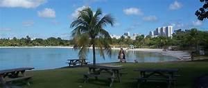 Atracciones de Miami: Oleta River Park Miami Vuelos Baratos