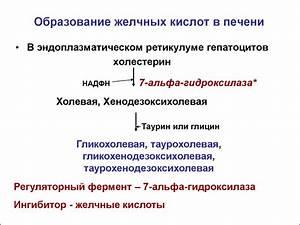 dolmen 25 mg инструкция