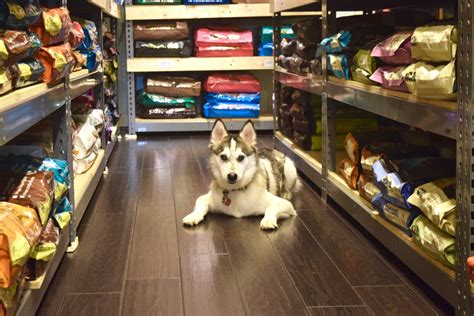Puppy Pantry High Quality Foods Vs Large Chain Store Foods