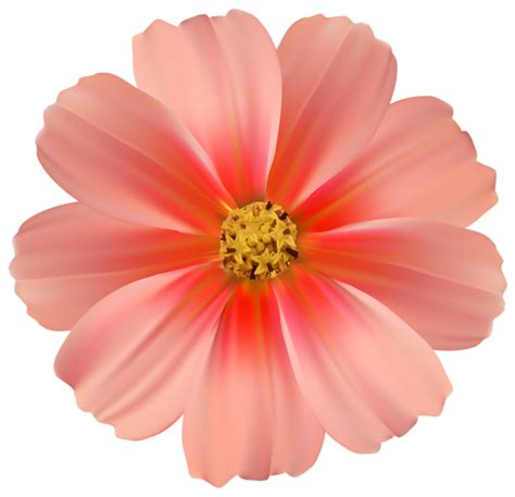 orange daisy png clipart image gallery yopriceville