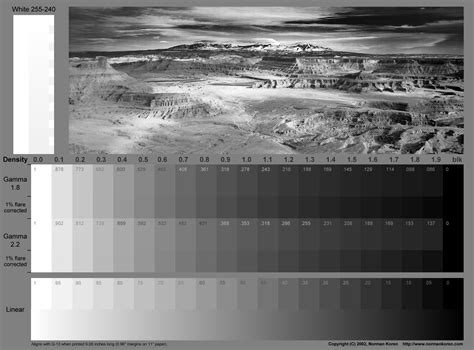 Colour And Monochrome Images For Testing