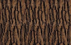 Seamless tree bark texture. Endless wooden background for ...