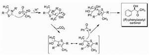 General Reaction Mechanism For Ahas And Pdc Mediated   R