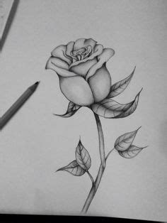 Printable Rose Coloring Pages For Kids | Cool2bKids | Stencil | Rose coloring pages, Free adult