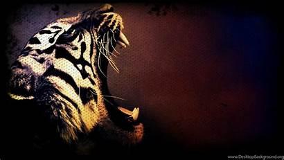 Tiger 3d Wallpapers Cool Backgrounds Amazing Desktop