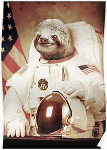 Small Calendars Quot Astronaut Sloth Quot Posters By Bakuspt Redbubble