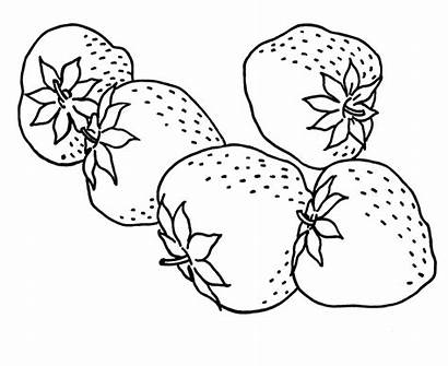 Coloring Fruit Pages Strawberry Sheet Fruits Printable