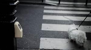 Mairie De Paris Formation : mise aux normes feux pi tons accessibilit voirie ~ Maxctalentgroup.com Avis de Voitures