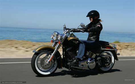 Download Wallpaper Harley-davidson, Softail, Flstn Softail