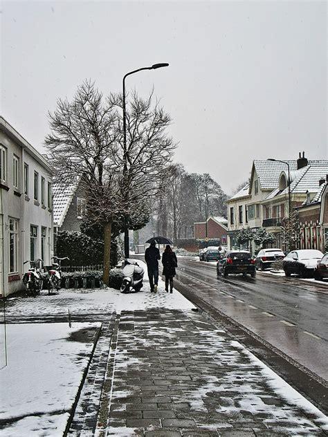 Garten Landschaftsbau Erfurt by Winterdienst Junne Gartendesign Gartengestaltung