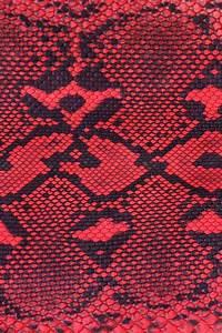 Black Snake Skin Wallpaper - WallpaperSafari