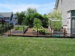 best outdoor dog fence ideas art decor homes With small dog outdoor fence