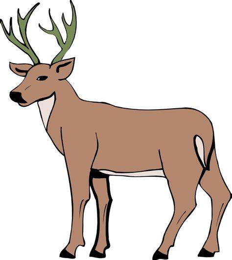 cartoon deer cartoon deer page  cartoon drawing