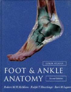 Color Atlas Of Foot And Ankle Anatomy by McMinn