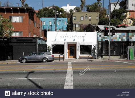 industriel farm cuisine los angeles ca sunset boulevard stock photos sunset boulevard stock