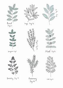 Herb Print  By Ryn Frank  Rynfrank Co Uk