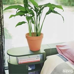 Aloe Vera Ikea : 25 melhores ideias de aloe pflanze no pinterest aloe vera pflanze hortel banheiros verdes e ~ Preciouscoupons.com Idées de Décoration