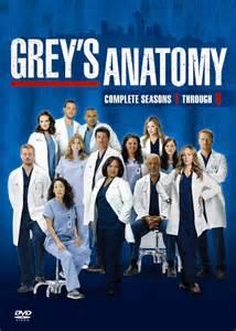 Assistir Greys Anatomy 13ª Temporada Episódio 17 – Dublado Online