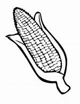 Corn Coloring Drawing Pages Ear Cob Indian Template Candy Bar Stalk Field Stalks Thanksgiving Sketch Getdrawings Printable Chocolate Getcolorings Templates sketch template