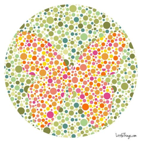 and green color blind test 1 in 12 and 1 in 200 can t see color could you