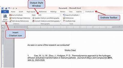 Endnote Word Citations Library References Import