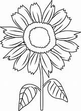 Sunflower Coloring Clip Pretty Line Pages Sweetclipart sketch template