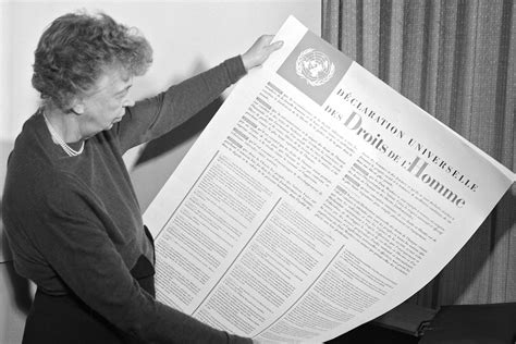 What does the Universal Declaration of Human Rights mean ...