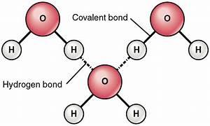 Enlaces de hidrógeno - Escuelapedia - Recursos Educativos
