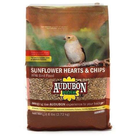 wagner s 50 lb nyjer seed wild bird food 62052 the home