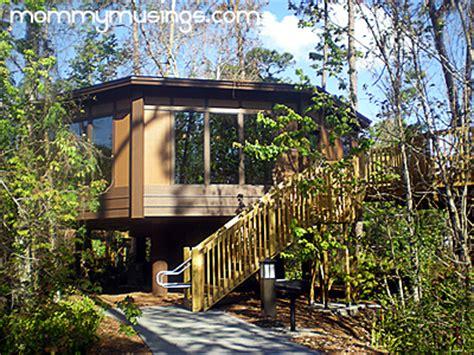 Treehouse Villas At Disney's Saratoga Springs