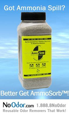 fish smells like ammonia 1000 images about ammonia smell solutions on pinterest aquarium stress and freshwater aquarium