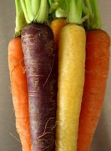 Carrots Used To Be Purple Before The 17th Century