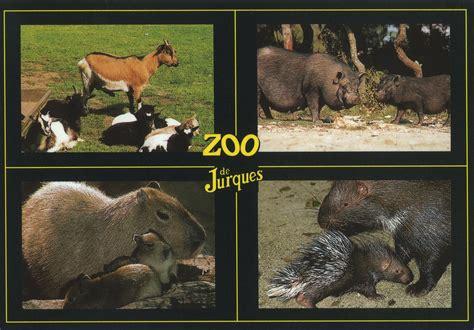 Les Zoos Dans Le Monde  Zoo De Jurques