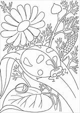 Coloring Insects Pages Children Animals sketch template
