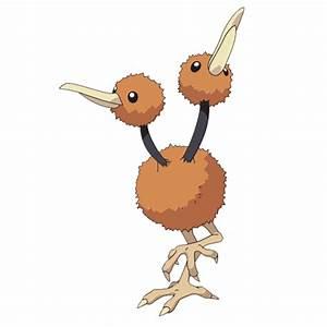 Pokemon Doduo Images | Pokemon Images