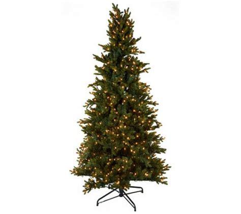 bethlehem lights 6 5 noble spruce tree w