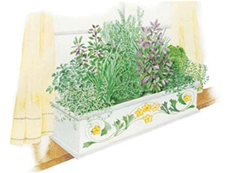 an indoor herb box