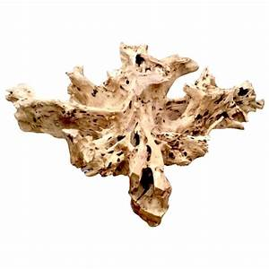 teak root coffee table base for sale at 1stdibs With teak root coffee table for sale