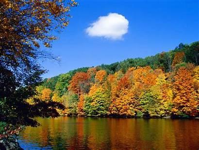 Nature Scenes Scene Natural Fall Autumn Wildlife
