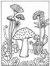 Coloring Mushroom Mushrooms Printable Sheets Adult Drawing Trippy Flora Fauna Stem Leg Psychedelic Adults Colouring Studio Short Sheet Flowers Mandala sketch template