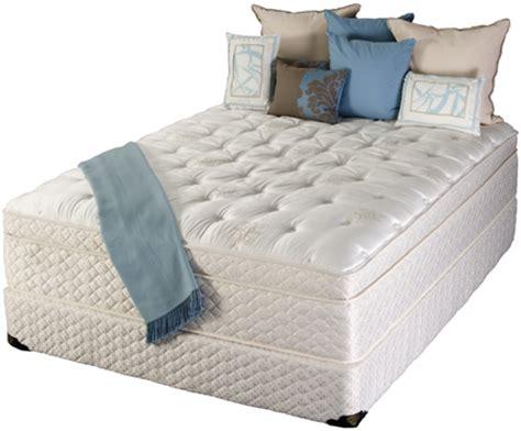 sofas for bad backs sofa furniture kitchen best mattress for bad backs