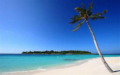Sand Beach Palm Desktop 4k Wallpapers