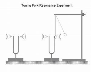Tuning Fork Resonance